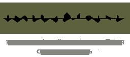 Логотип интернет магазина армейского военного камуфляжа и обуви